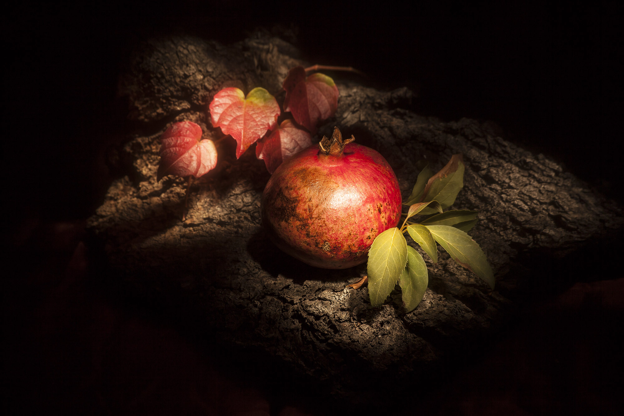 still life-melograno-food